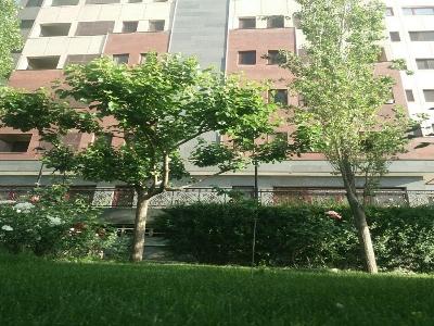اجاره سوئیت روزانه در تهران @F2865 | ارازن جا